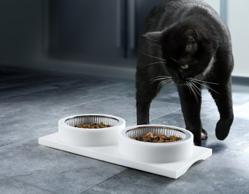 Tips for choosing the right cat food